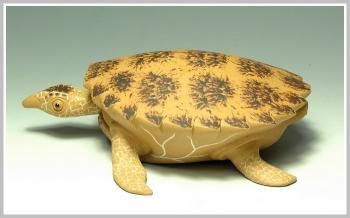 紫砂壶图片:黄金海龟 精细如生 - 宜兴紫砂壶网