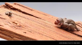 紫砂壶图片:美猴戏蛙镇纸 / 香插  美猴已经长大了~~美猴戏蛙镇纸 / 香插  - 宜兴紫砂壶网