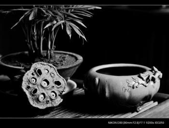 紫砂壶图片:全手文房水洗 香炉 雅趣十足 优质本绿 - 宜兴紫砂壶网