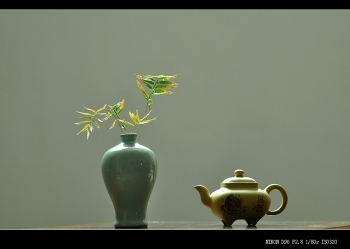 紫砂壶图片:文气小壶 器形端庄周正 本绿小传炉 - 宜兴紫砂壶网