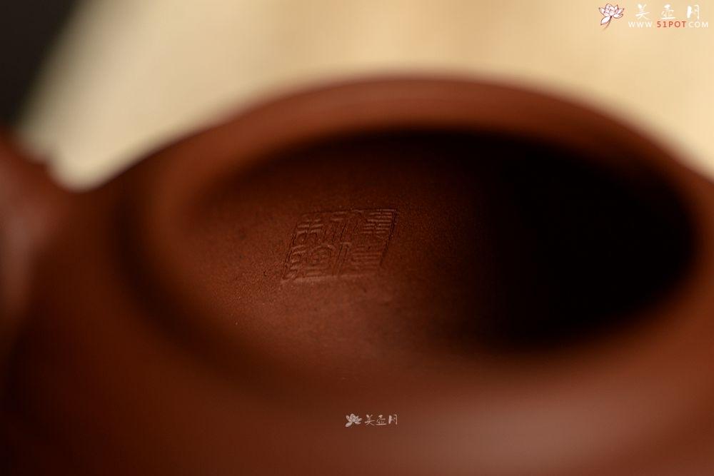 紫砂壶图片:史云棠高徒储俊伟作品 大品花货 饱满大气  全手智竹 - 宜兴紫砂壶网