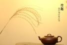 紫砂壶图片:灵秀之作 潘丹初全手竹趣二式  线条简练 爱不释手 - 宜兴紫砂壶网