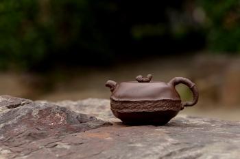 紫砂壶图片:潘丹初全手新作 道法自然 妙趣横生 原创溪竹 - 宜兴紫砂壶网
