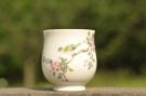 紫砂壶图片:新彩玉光白釉花鸟1 景德镇主人杯 - 宜兴紫砂壶网