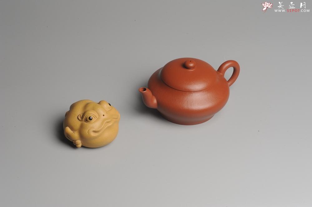 紫砂壶图片:小煤窑朱泥 全手工扁灯壶 端庄秀雅 - 宜兴紫砂壶网