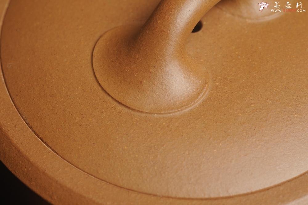 紫砂壶图片:美壶特惠 精工黄金段泥竹段 挺拔秀雅 茶人醉爱 - 宜兴紫砂壶网