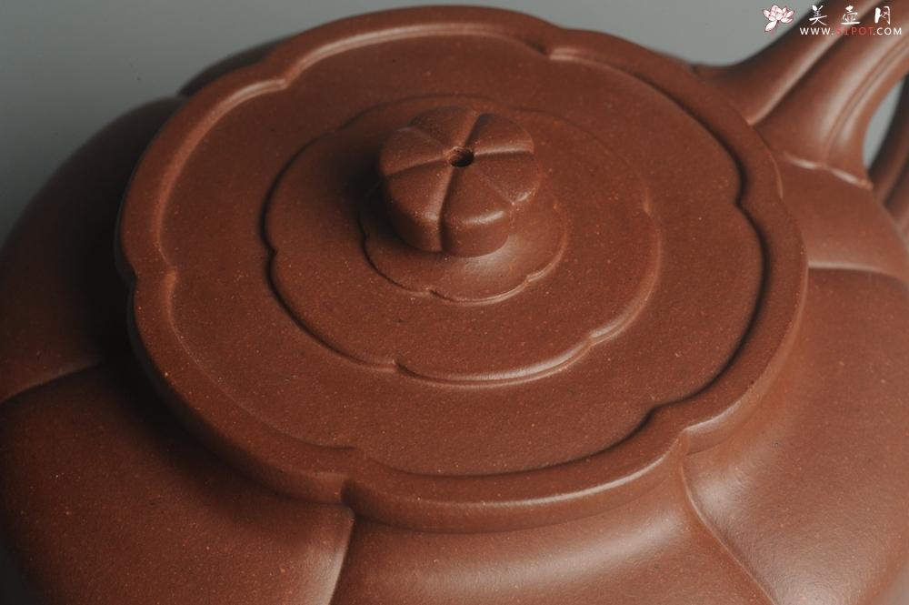 紫砂壶图片:实力派张海艳手工压制成型精工梅花周盘壶 气势磅礴 - 宜兴紫砂壶网