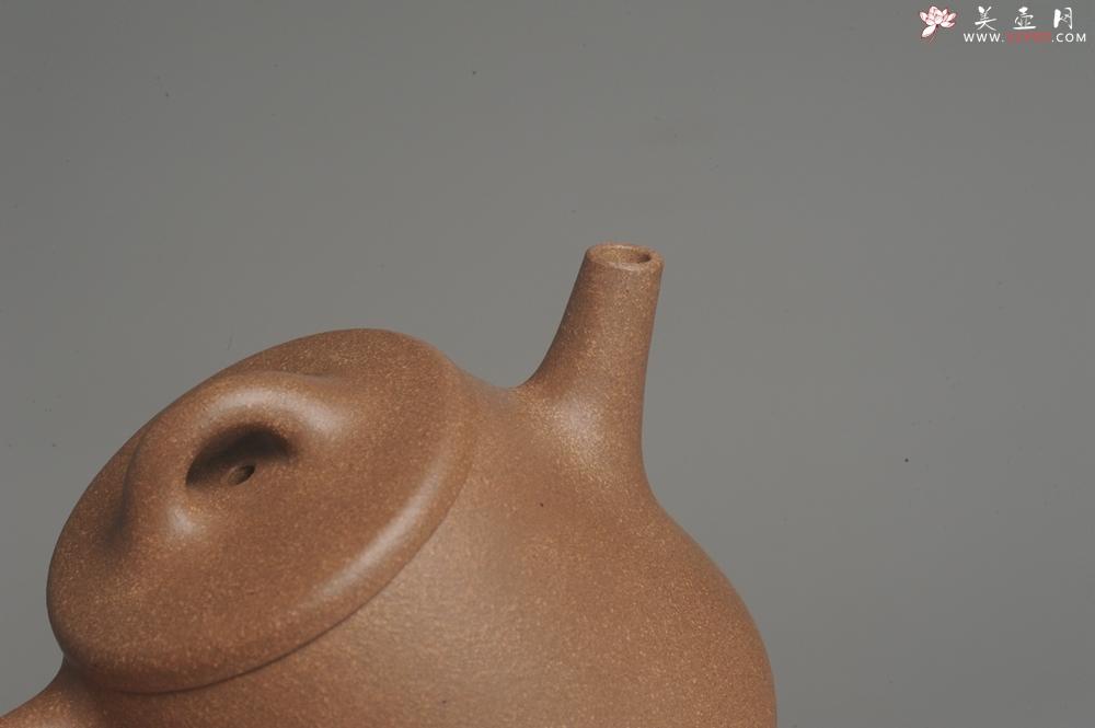 紫砂壶图片:美壶特惠 油润老段泥精致高石瓢紫砂茶壶 茶人醉爱 - 宜兴紫砂壶网