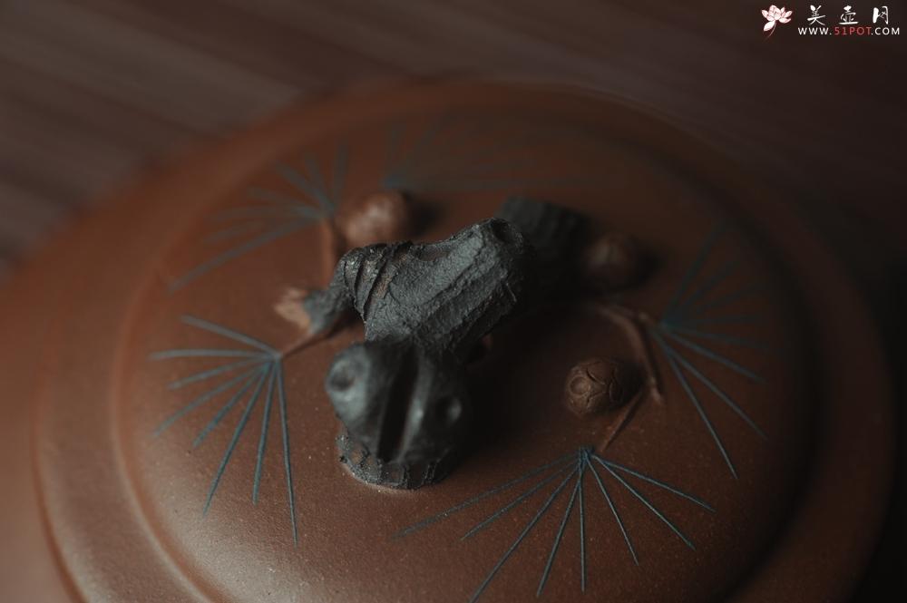 紫砂壶图片:美壶特惠 精致报春系列之松报春壶 - 宜兴紫砂壶网