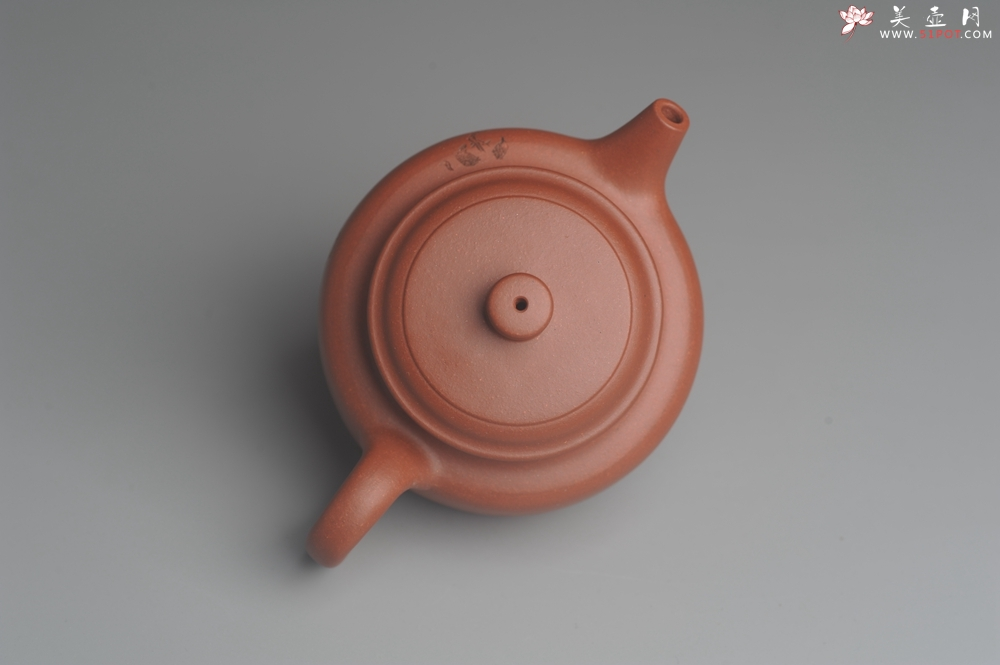 紫砂壶图片:美壶特惠 优质清水泥精致枯枝鸟德中壶 矿物质丰富 茶人醉爱 - 宜兴紫砂壶网
