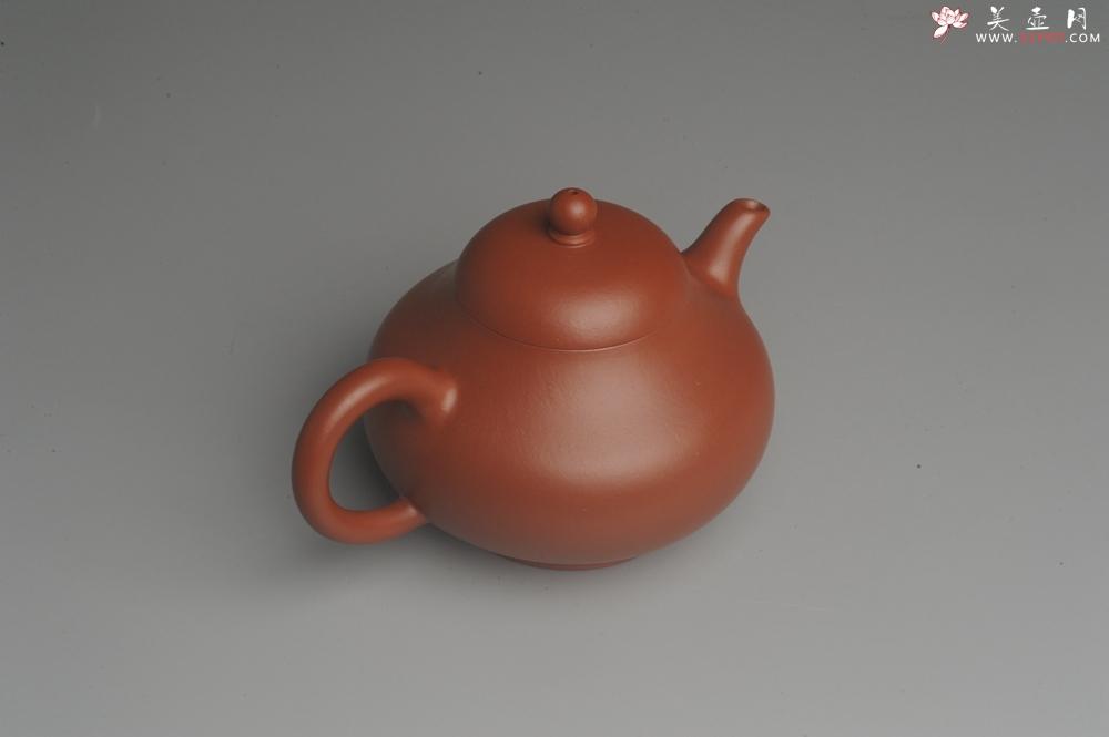紫砂壶图片:美壶双11福利特惠回馈 精致朱泥茗香小壶 仅一只 - 宜兴紫砂壶网