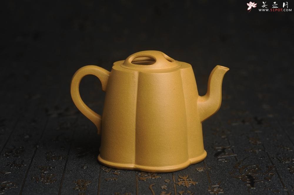 紫砂壶图片:美壶特惠 精致黄金段泥井泉壶 茶壶 茶人醉爱 - 宜兴紫砂壶网