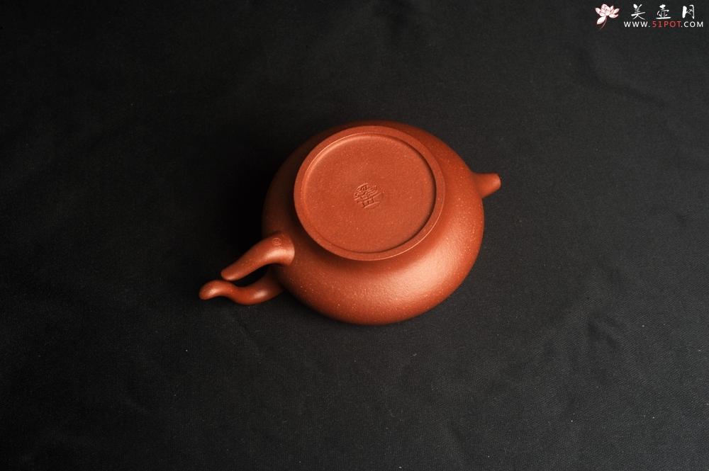 紫砂壶图片:美壶特惠 精致降坡泥飞鸿壶 茶人醉爱 - 宜兴紫砂壶网